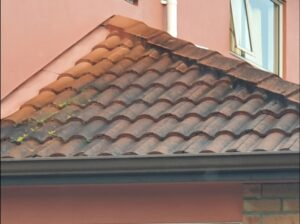 Gutter cleaning tile roofs Auckland NZ