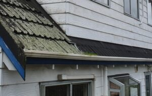 Gutter cleaning in Auckland NZ
